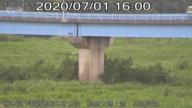 思川 松原大橋右岸上流のライブカメラ 栃木県小山市