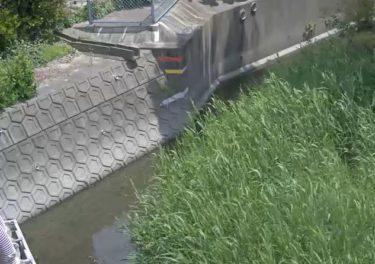 牛津江川 柿江樋管のライブカメラ|佐賀県小城市