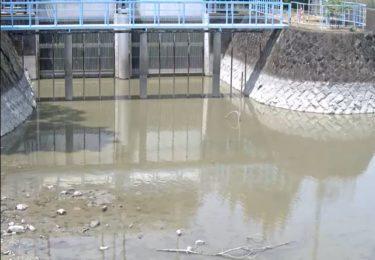 牛津川 一本松排水機場のライブカメラ|佐賀県小城市