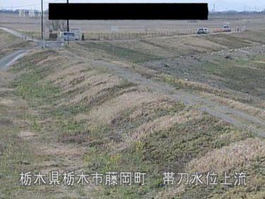巴波川 帯刀水位上流のライブカメラ 栃木県栃木市